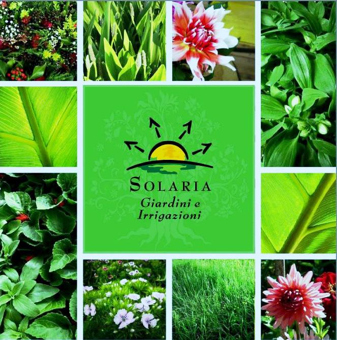 Guarda la nostra Brochure