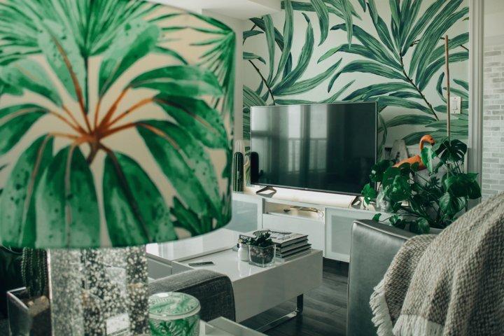 Piante d'appartamento - Solaria Giardini