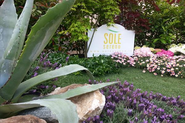 Solaria giardini realizzazione e manutenzione di for Allestimento giardini privati